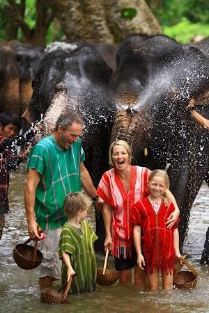 Imagini Thailanda: spaland un elefant in rau, Patara, Thailanda