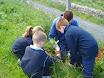 Green Schools Dale Treadwell 019.jpg