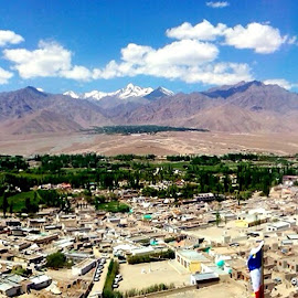 Panaromic View of Leh City by Norbu Jinpa - Landscapes Travel ( clouds, mountains, leh city )