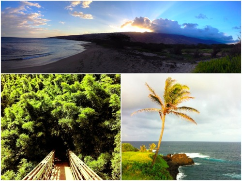 Hawai i 5