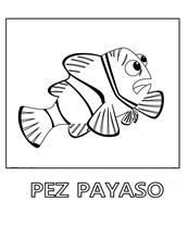 pez-payaso-2 1