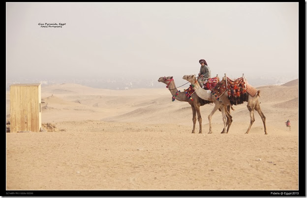 Egypt Day 11_03-44