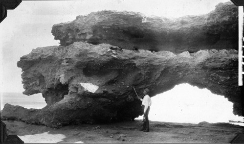 Elmer Riggs standing by a large natural arch, Necochea by The Field Museum Library, on Flickr [The Commons]
