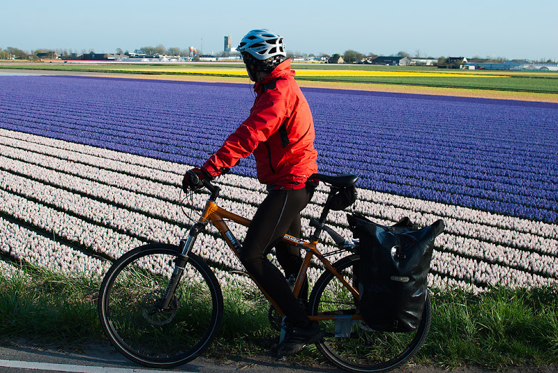 Riding alongside the flower fields from Holland.