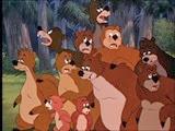 1-4 les ours