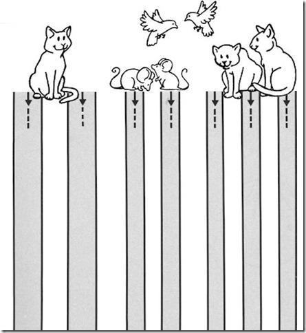 grafomotricidad (9)