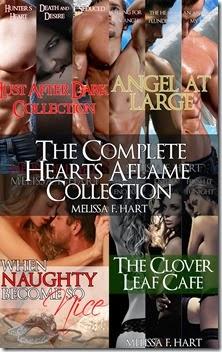 cover_copy