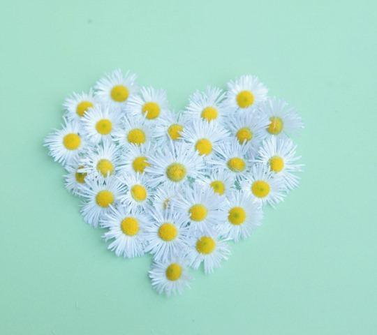 Pure Love_33582215