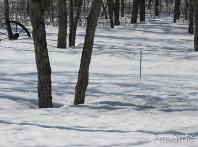 The snowstick