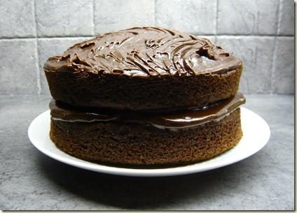 fudge cake1