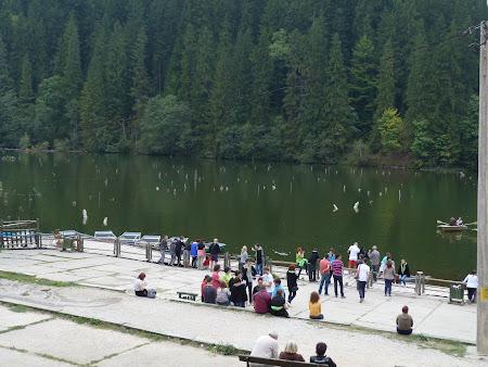 Obiective turistice Harghita: Lacu Rosu