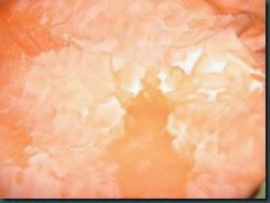 Orange snow-dye