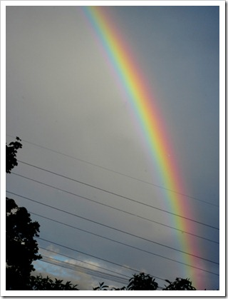 rainbowjune23
