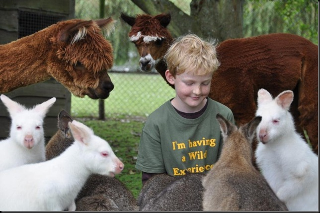 Elliott with Wallabies