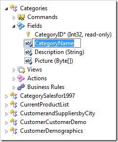 CategoryName field in Rename mode in the Project Explorer.