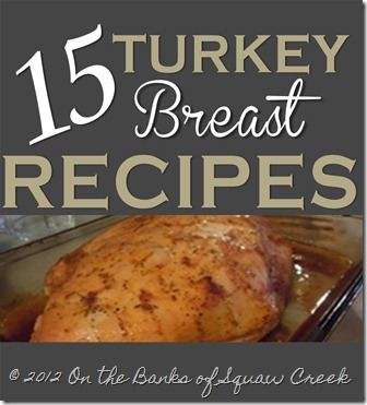 turkey breast recipes - Page 001