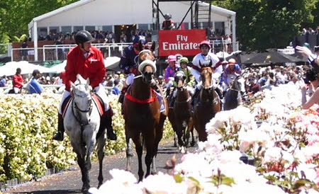 coolmore_zoustar _rts 1