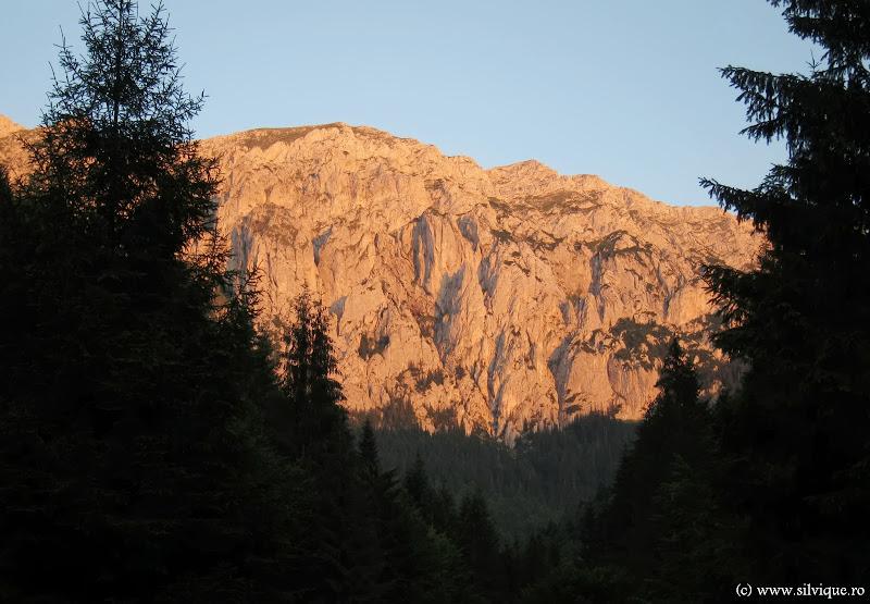 2013.07.? - Umerii Pietrei Craiului - Braul de Jos - Lanturi