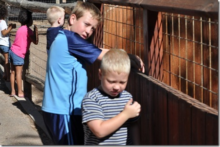 07-11-11 zoo 54