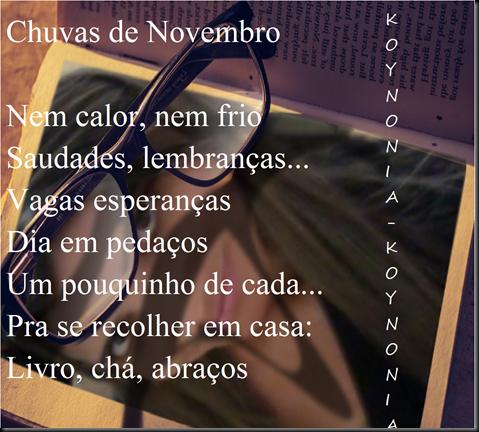 CHUVAS DE NOVEMBRO