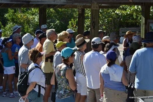 A Big Group for the Birding Tour