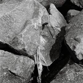 Cut Adrift by Christiaan Partridge - Nature Up Close Rock & Stone ( black and white, stone, rock formation, beach, rocks )