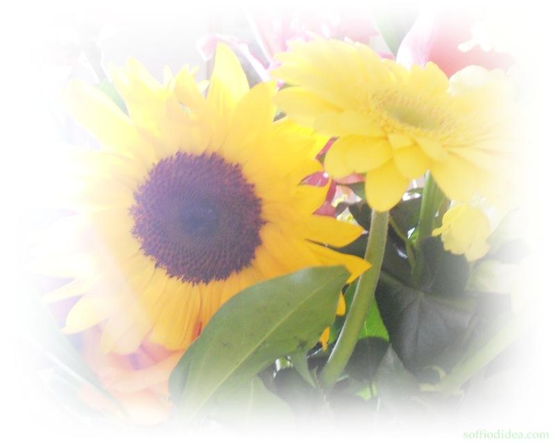 Pupa-fiori-3