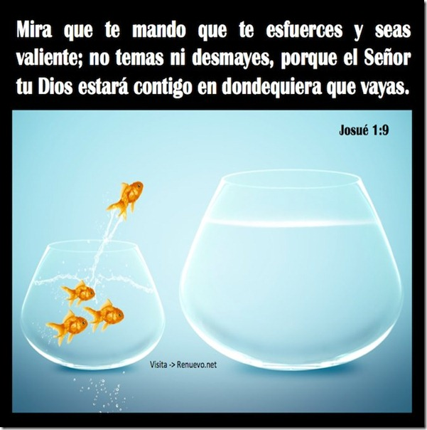 imagenes con frases cristianas (8)