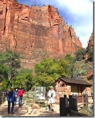 Zion National Pk 048