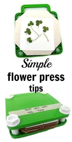 simple flower press tips