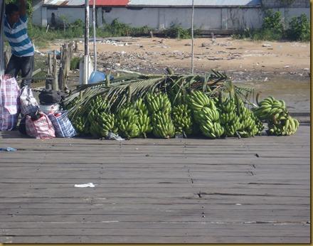 2012_Guyana 010
