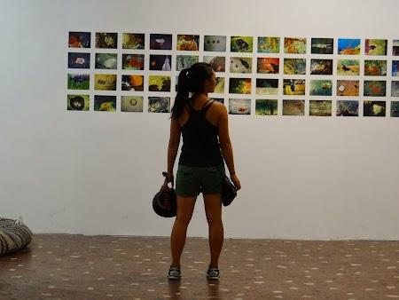 23. Expozitie foto.JPG