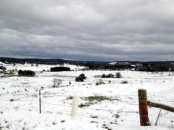 snow-bungendore.jpg