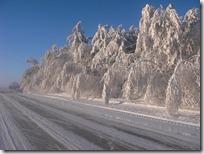 paisajes nevados (99)