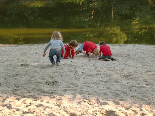 Bevers spelen in het zand