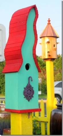 crazy bird house