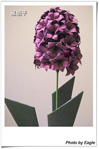 Оригами преподавания Гиацинт