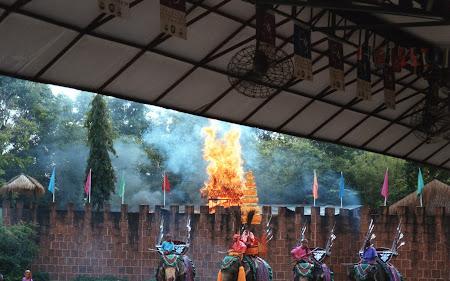 Spectacol Thailanda: batalie elefanti