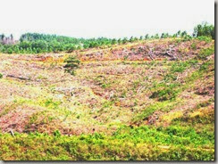 lahan erosi sml babu