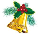 Christmas campanula