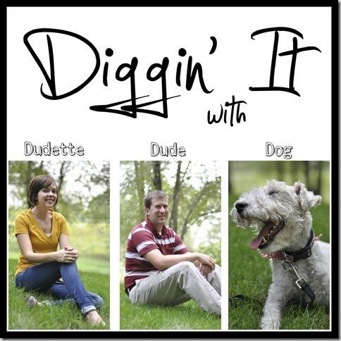 Digginit-copy2-copy_thumb2_thumb
