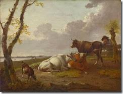 schweickhardt-cattle-NG1878-fm