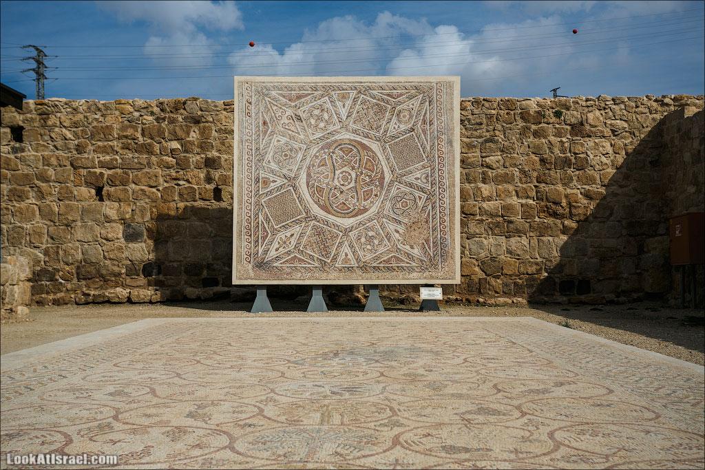 Мозаики от «Доброго самаритянина» (israel  путешествия иудея и самария и интересно и полезно выставки музеи фестивали  20130215 good samaritan mosaic 011 5D3 8335)