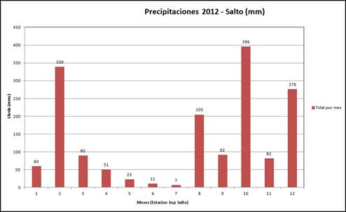 Precipitaciones (AÑO 2012)