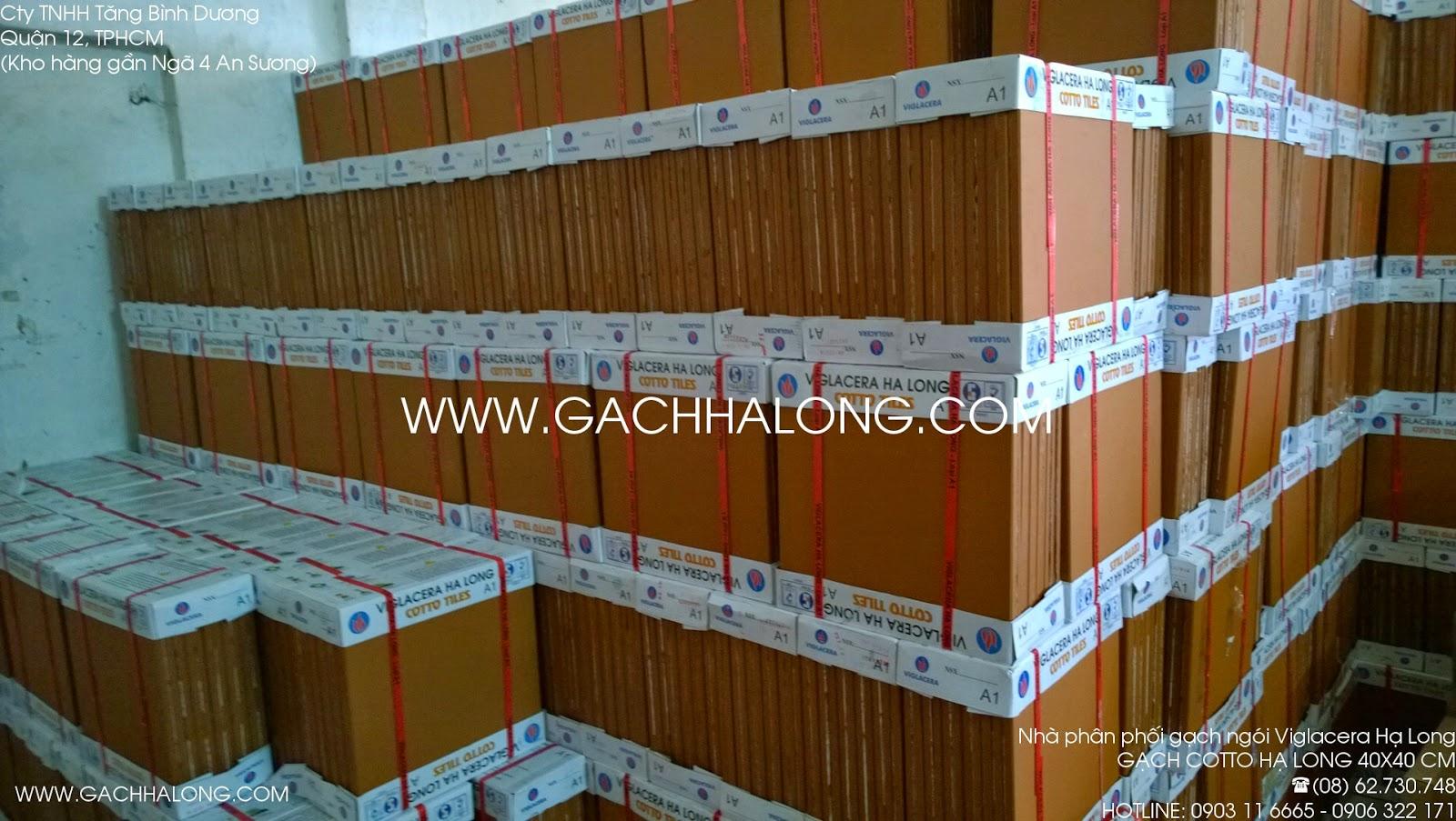 Lô hàng gạch cotto 30x30 Viglacera Hạ Long
