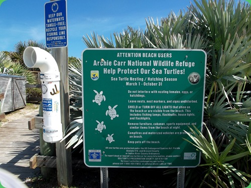 Barrier Island Center 072