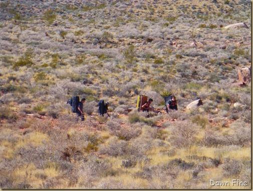 hiking the wash_058