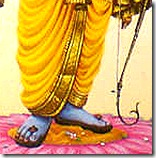 Lord Rama's lotus feet