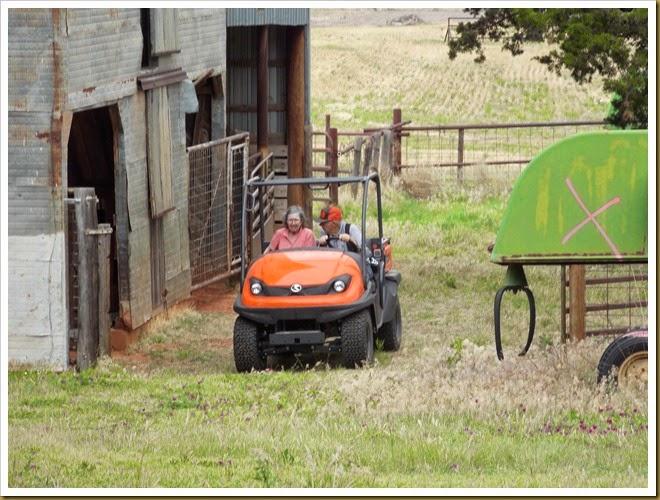 Farm May 2014 (61)