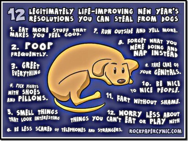 Dogs new years resolutions